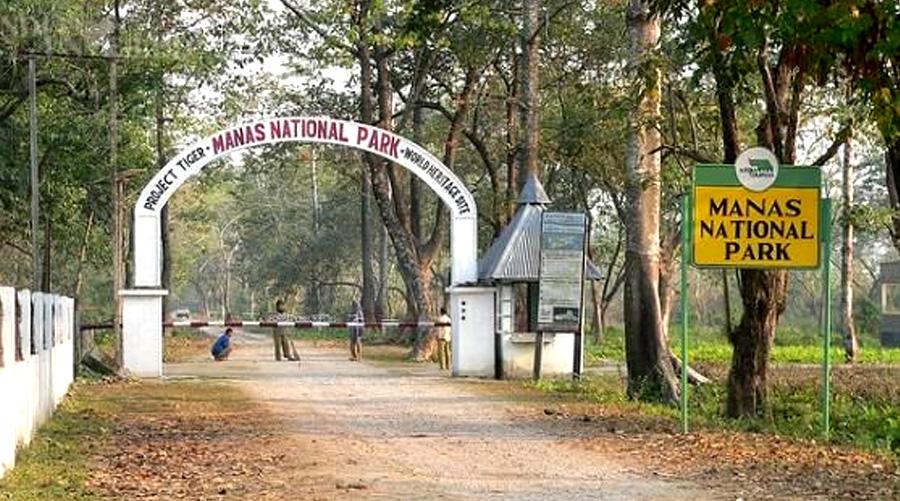 Manas Wild Life Sanctuary, Assam